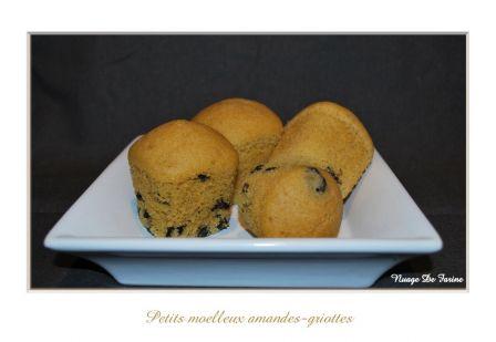 Petits moelleux amandes griottes Multi-Délices
