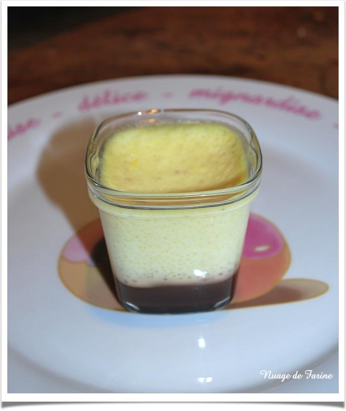 Crème vanille (flan) au coulis de chocolat Multi-Délices