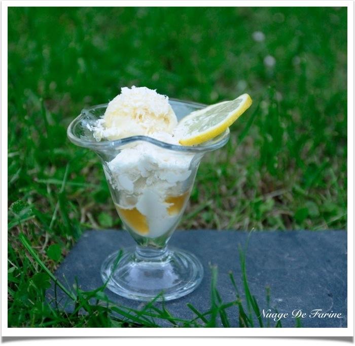 Comme une Piña Colada glacée (sorbet ananas, glace noix de coco)