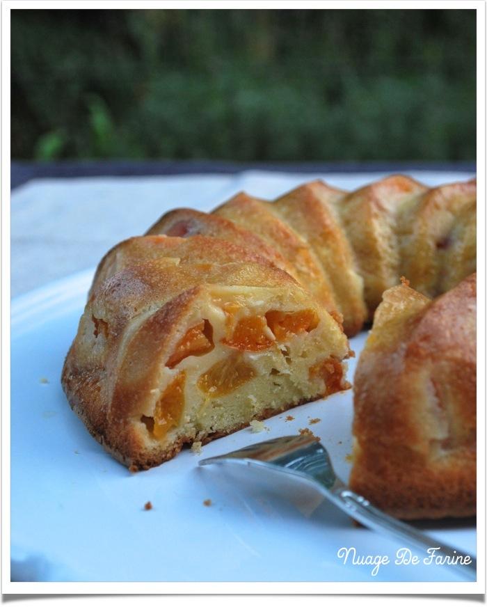 Gâteau ? clafoutis ? ou flan aux abricots ?…. à vous de choisir!