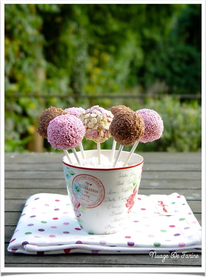 Les madeleines version cake pops