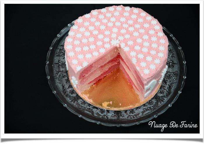 Gâteau rose2
