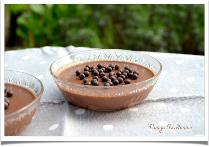 Panna cotta chocolatée légère