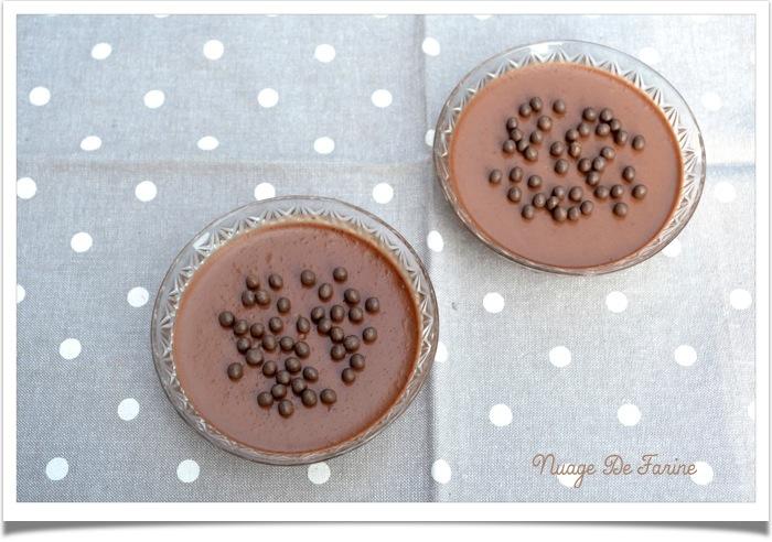 Panna cotta au chocolat légère3
