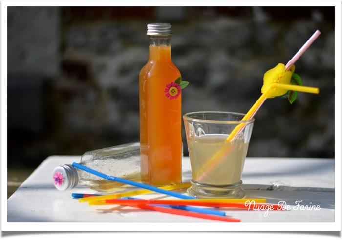 sirop de citron2