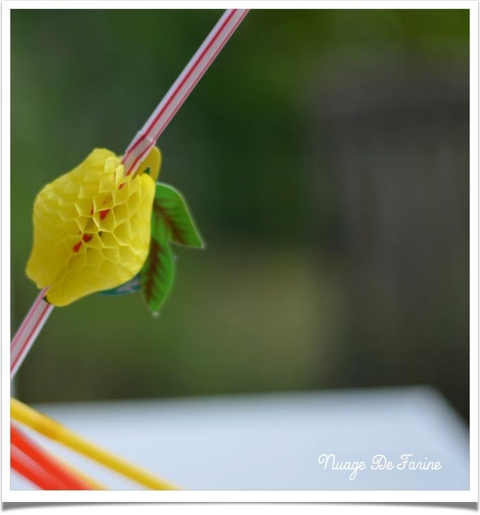 sirop de citron3