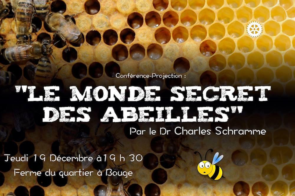 """19/12 Conférence """"Le monde secret des abeilles"""""""