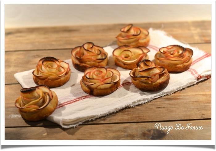 Roses de pommes5