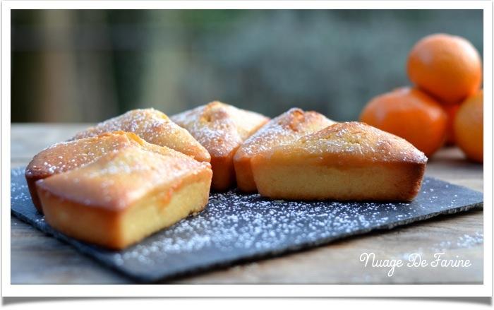 Gâteau aux amandes et clémentines3