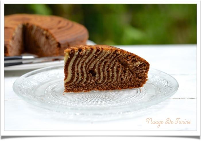 Zébra cake4
