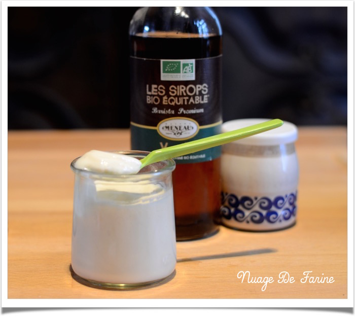 yaourts vanille2