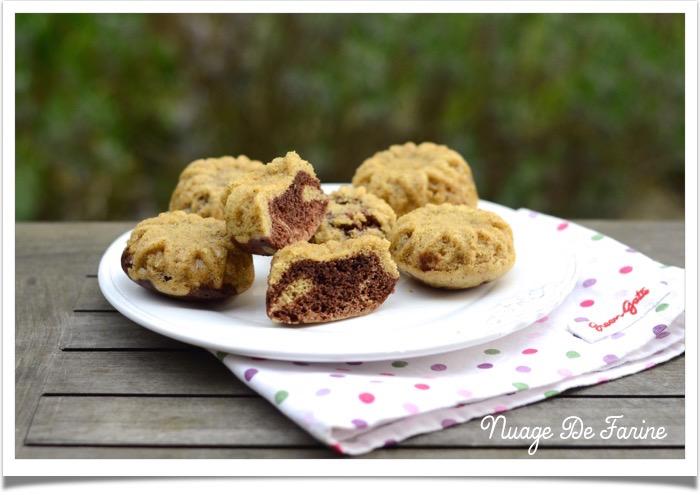Petits gâteaux de la savane2