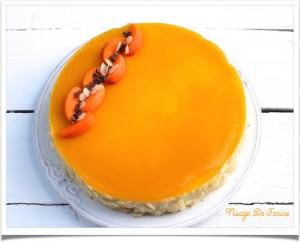 Entremets abricot2