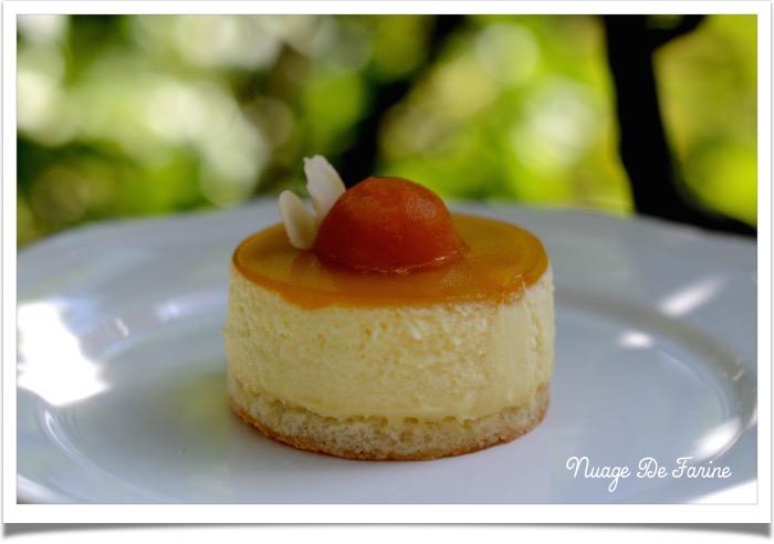 Entremets abricot6
