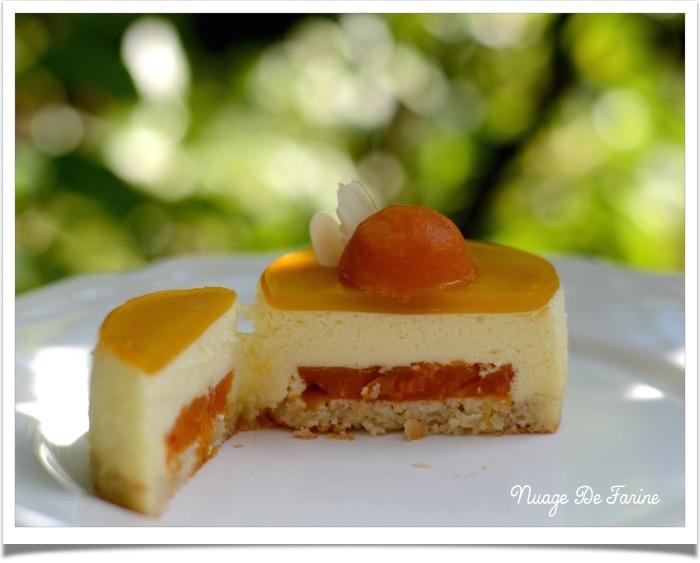 Entremets abricot5