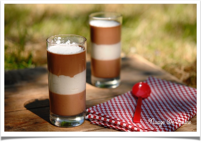 Pannamouscotta…. chocolat et noix de coco