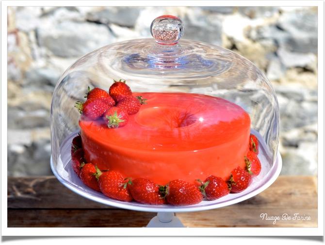 Gâteau à la mousse de fraises et ricotta4