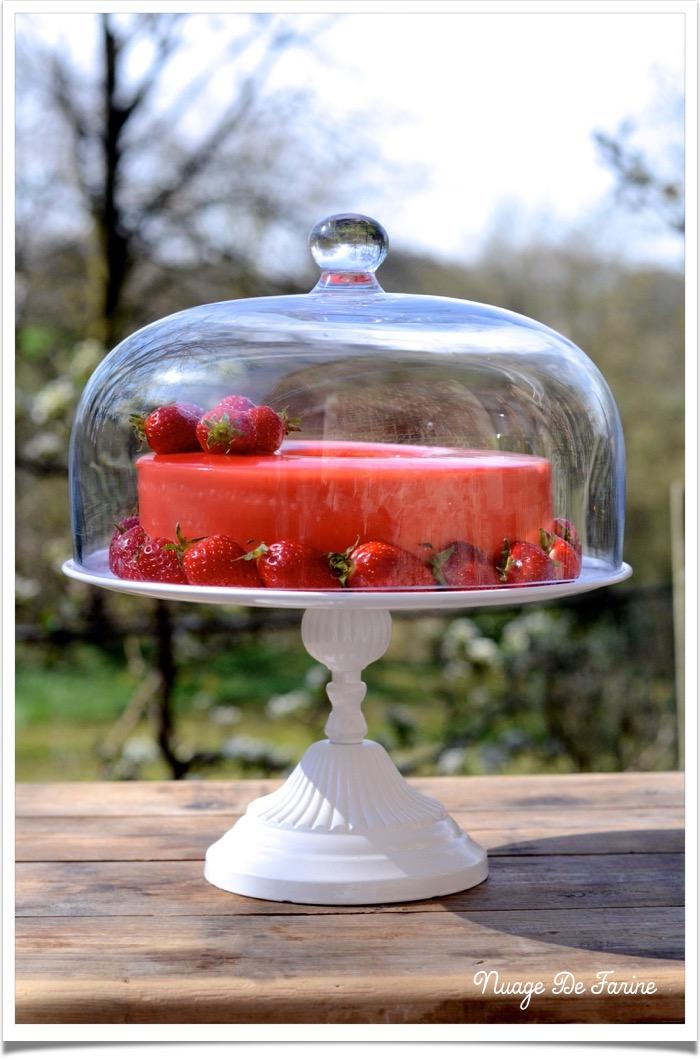 Gâteau à la mousse de fraises et ricotta3