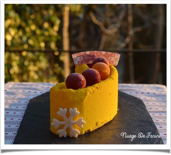 buche citron framboise3