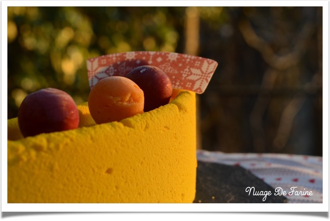 buche citron framboise5