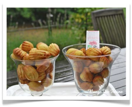 Madeleines au géranium ou au beurre de cacahuètes?