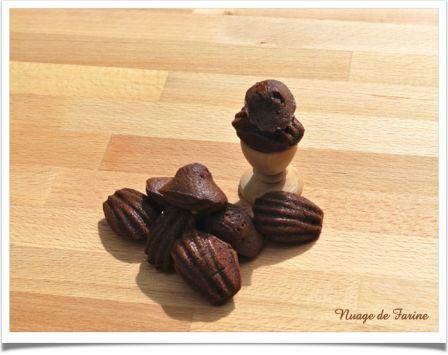 Madeleines au chocolat, comme des fondants….