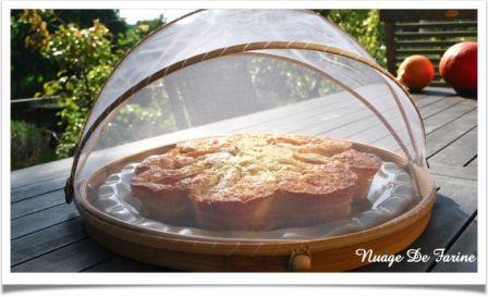 Gâteau Crousti-Moelleux aux pommes