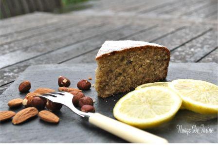 Gâteau citronné aux amandes et noisettes